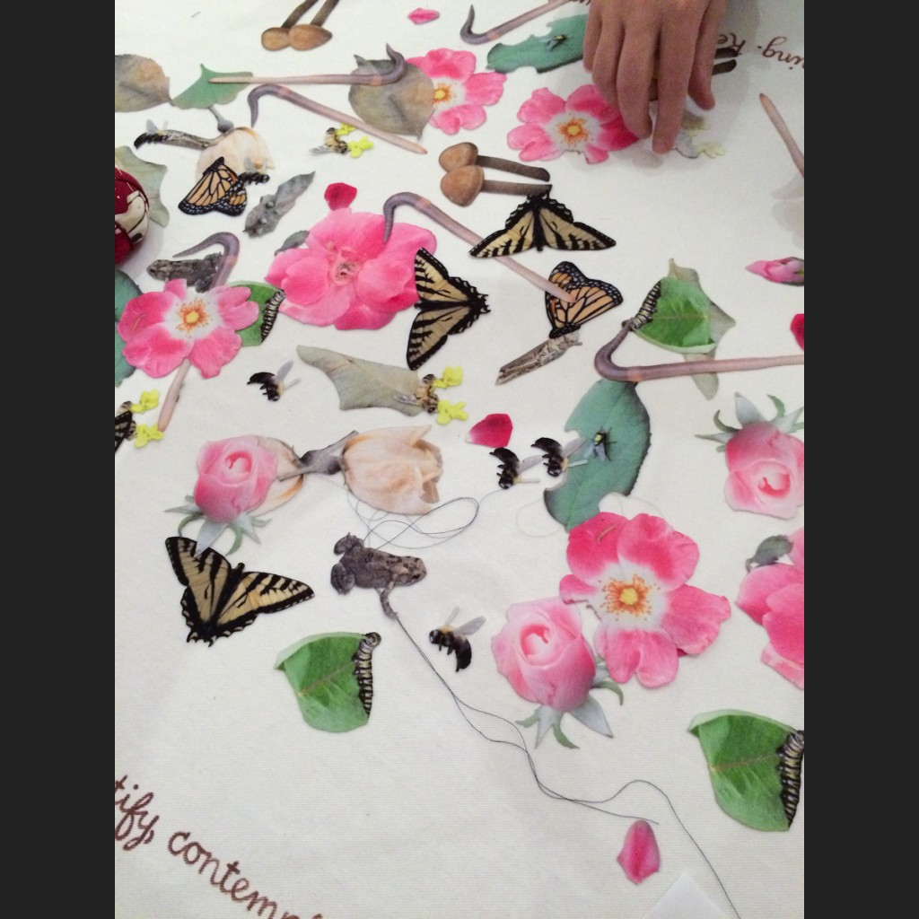photographic fabric patches of various insects and plants including butterflies and roses