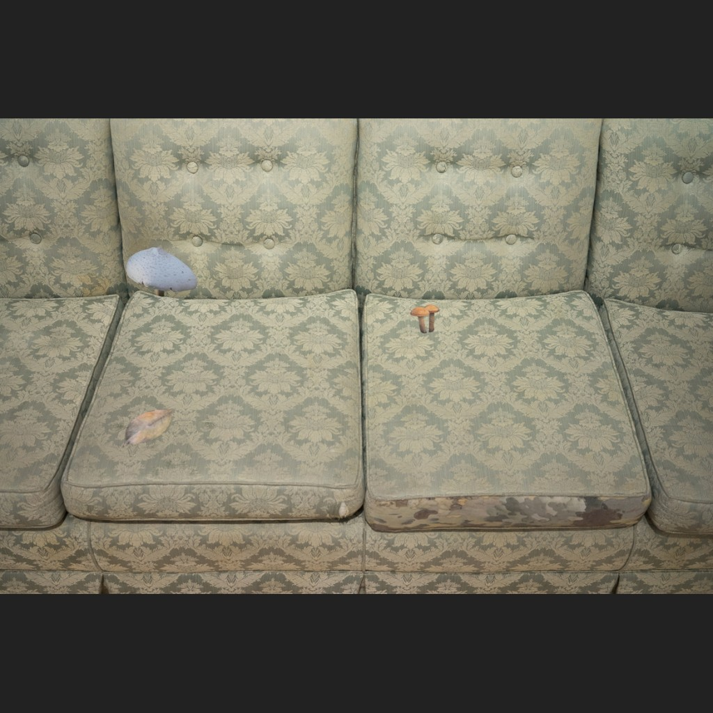mushroom patches on a green brocade couch with an abstract botanical pattern