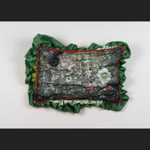 Pillow with photo of log with lichens and slime mold by Stephanie Lynn Rogers